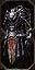 Black Steel Armour.jpg