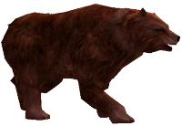 Hungry Brown Bear.png