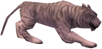 Hungry White Tiger.png